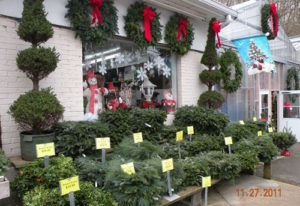 We Will Gladly Create Any Combination Shape Color Scheme And Size Especially For You Come Visit Our Wreath World Room In The Greenhouse Explore All